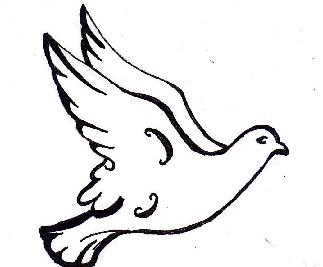 Simple Dove Outline