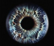 Inspiring image awesome, blue, close up, eye, eyeeeee, eyes, impresionante, iris, kool, macro, photo, photography, retina, window #20879 - Resolution 500x499px - Find the image to your taste
