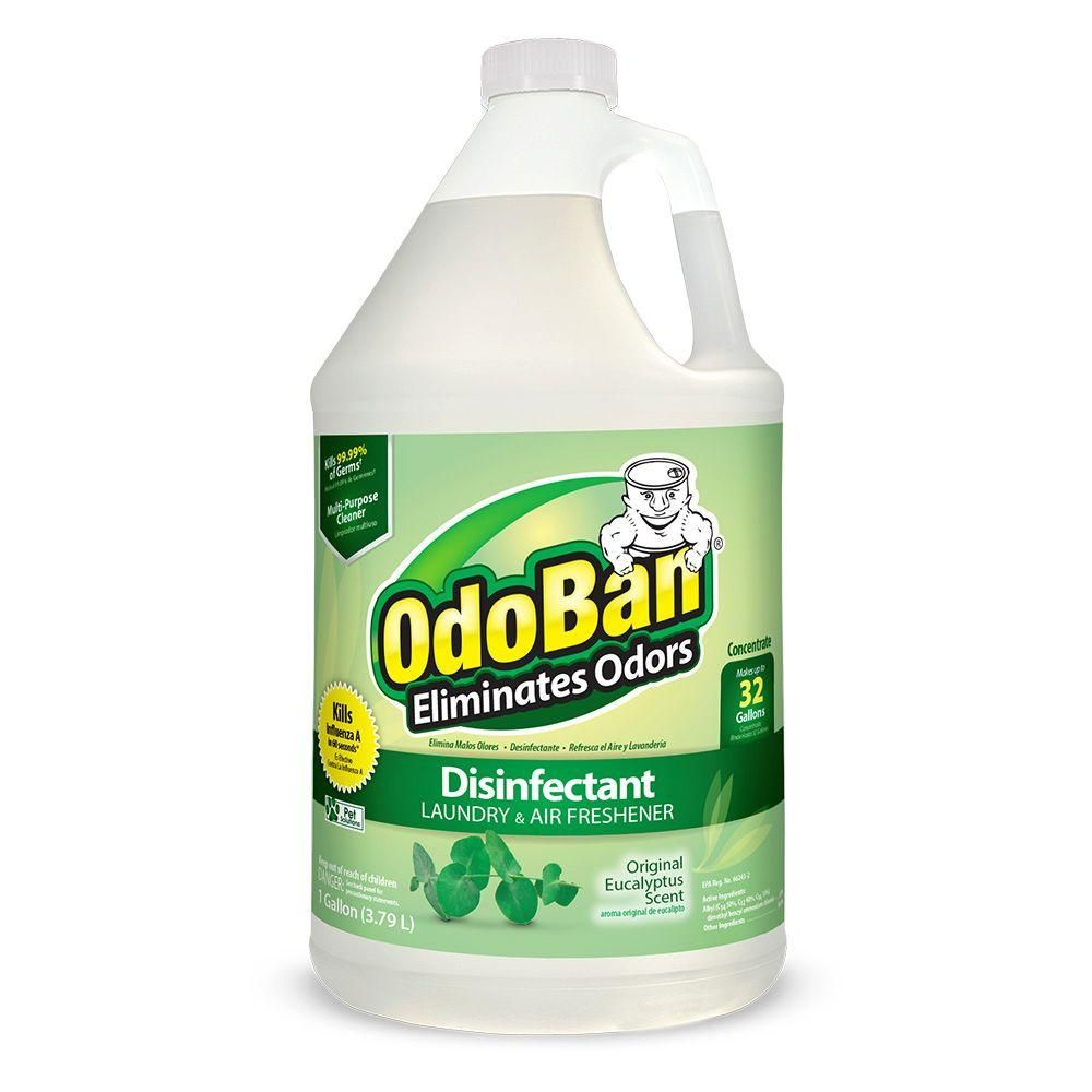 Eliminate Unpleasant Odors From Your Carpets Bedding Showers