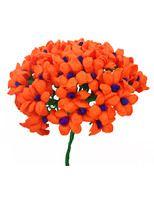 Cinco De Mayo Decorations Orange Terecitas Flowers Image Mexican