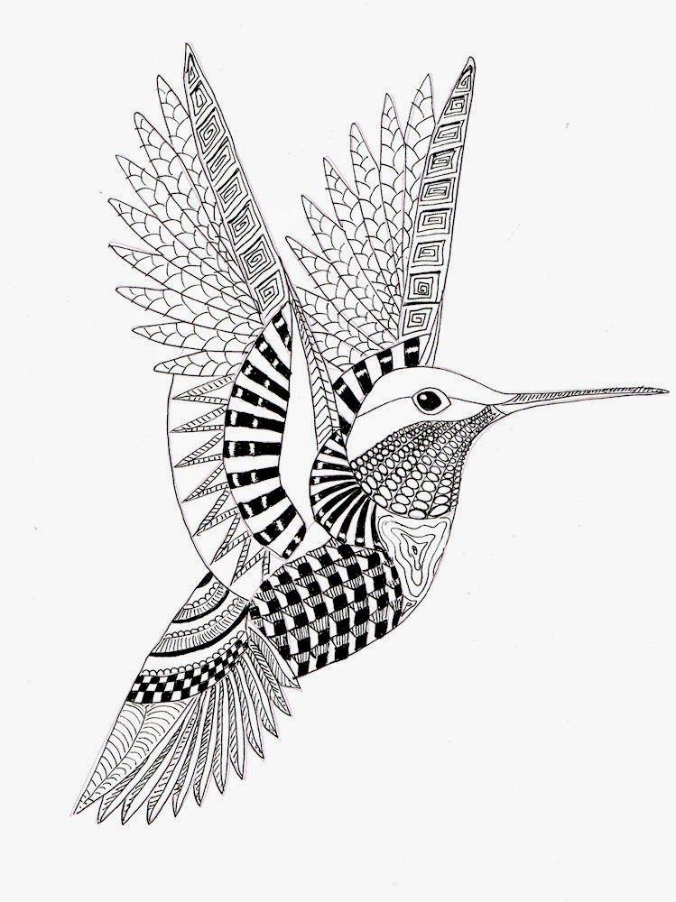 Hummingbird Colibri Dibujo Dibujos Con Mandalas Mandalas Para