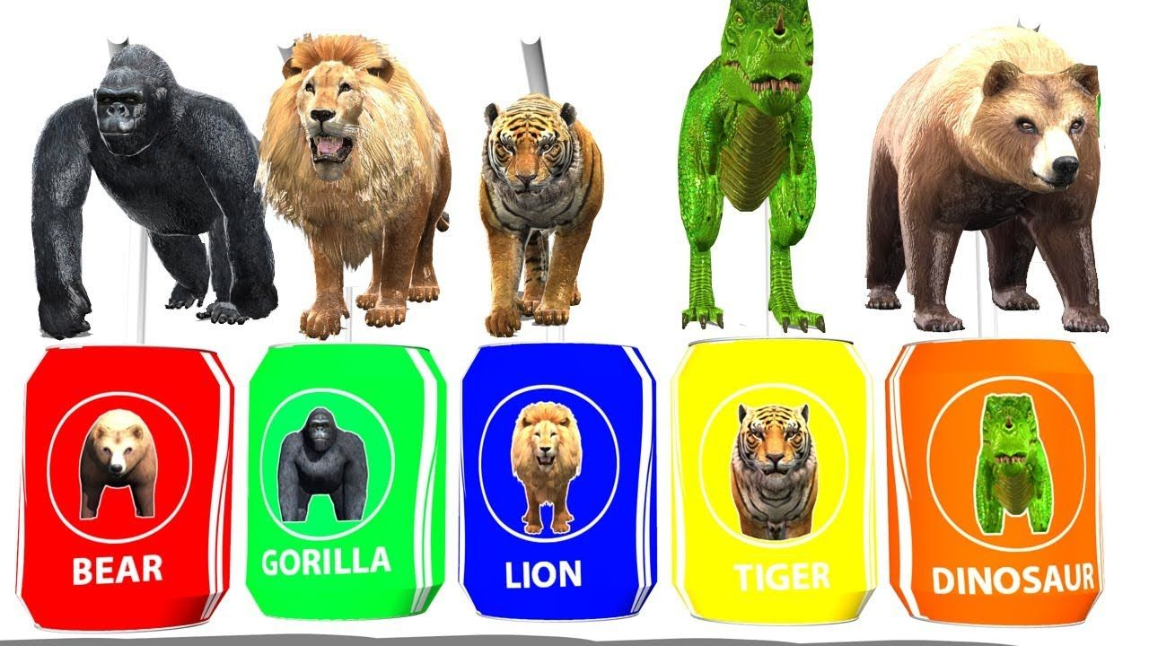 Wild Animals Drink Color Coke Tin Learn Colours Wild Animals Names An Animals Wild Learning Colors Animals