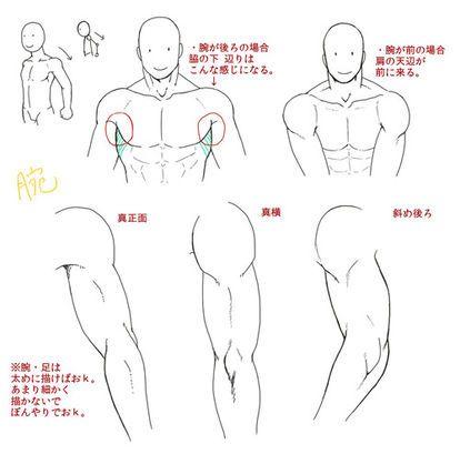 ハウ ツー ドロー イラストを描く際にめっちゃ役立つ情報画像集 Naver まとめ Dibujo Musculos Tutorial De Anatomia Dibujo De Posturas