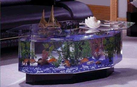 30 Faszinierendes Aquarium Feature Auf Couchtisch Design Ideen   Dekoration  Ideen 2018