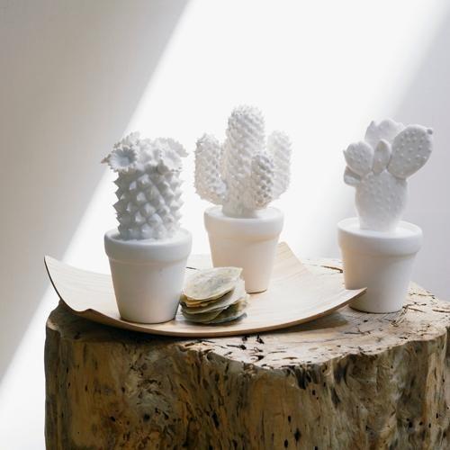 Les cactus decoratifs en porcelaine