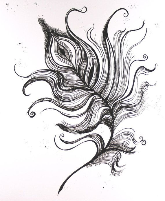 Line Art Feather : Peacock feather original ink drawing black and white art