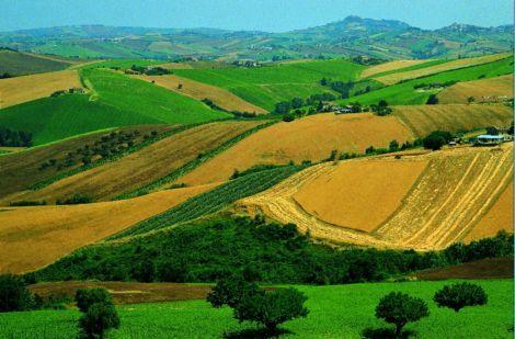 Le colline imparo for Planimetrie del paese di collina