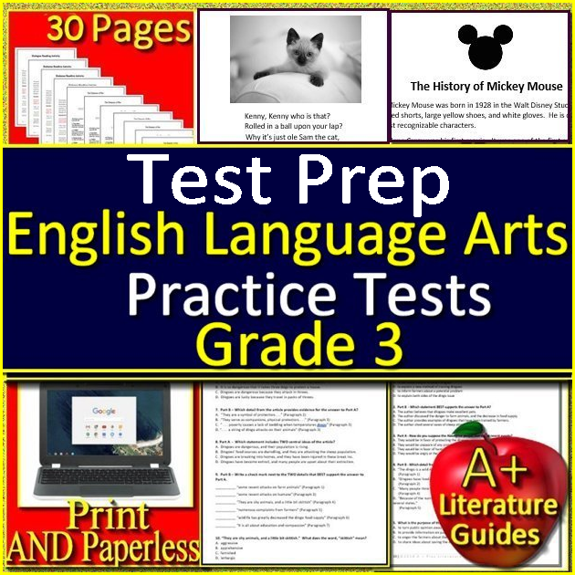 3rd Grade Test Prep - ELA Reading Practice Tests with
