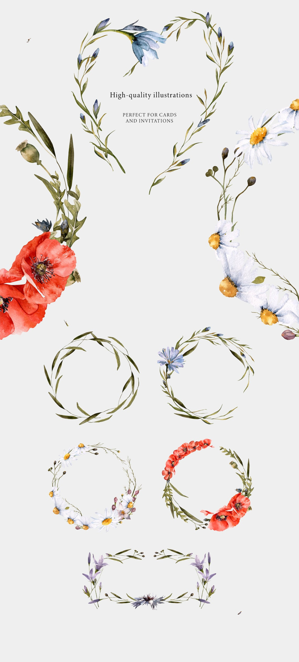 Wedding floral clipart Watercolor meadow wreath with wildflowers: chamomile Watercolor wreath clipart PNG centaury foliage