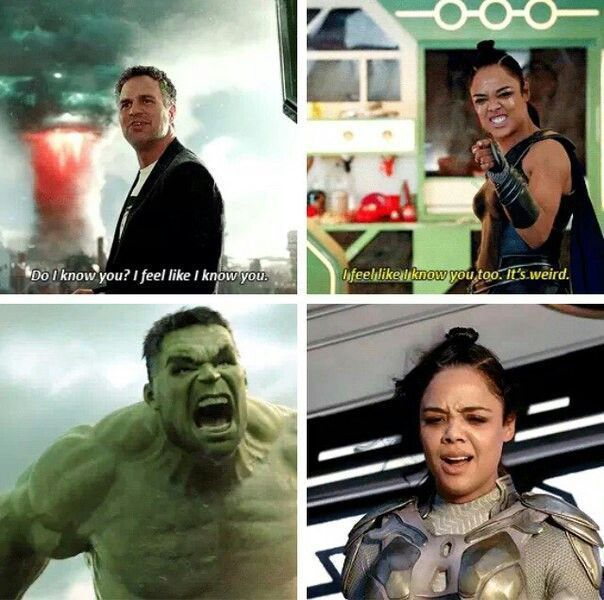 Valkyrie Banner Hulk And The Monster Funny