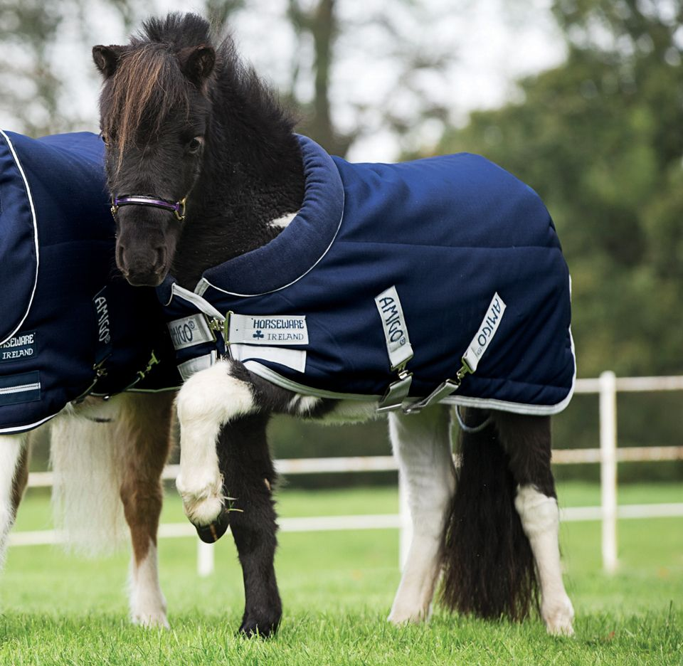 Amigo petite cozy 350g stable blanket 33 48 horse