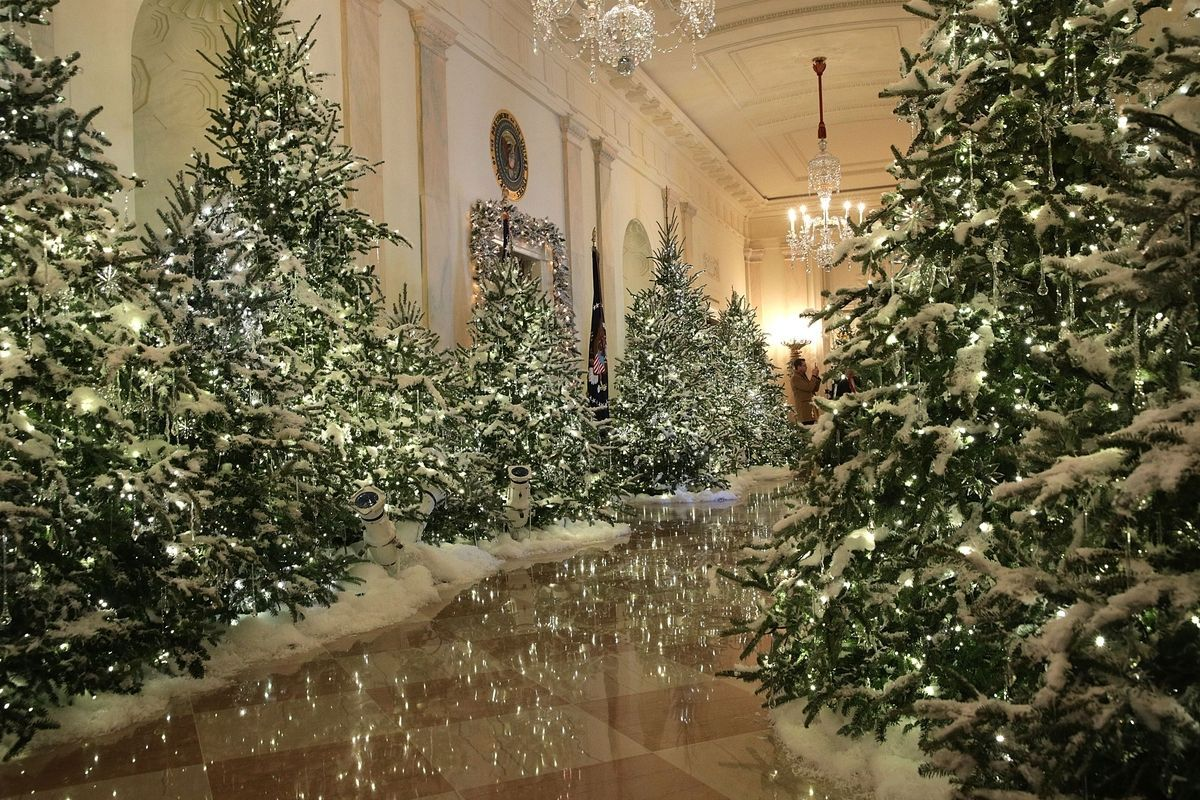 First Lady Melania Trump revealed the White House Christmas decorations  this morning, and the holiday transformation definitely reflects her style.