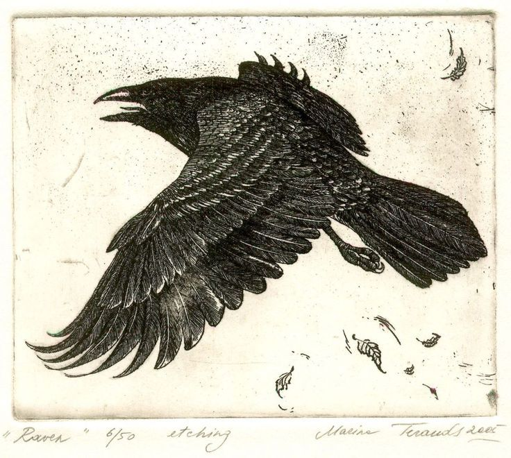 Printmaking On Pinterest 23 Pins Raven Art Crow Art Crow