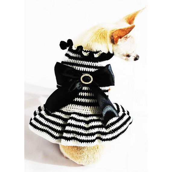 Vintage Black and White Dog Dress with Big Ribbon Cute Chihuahua ...