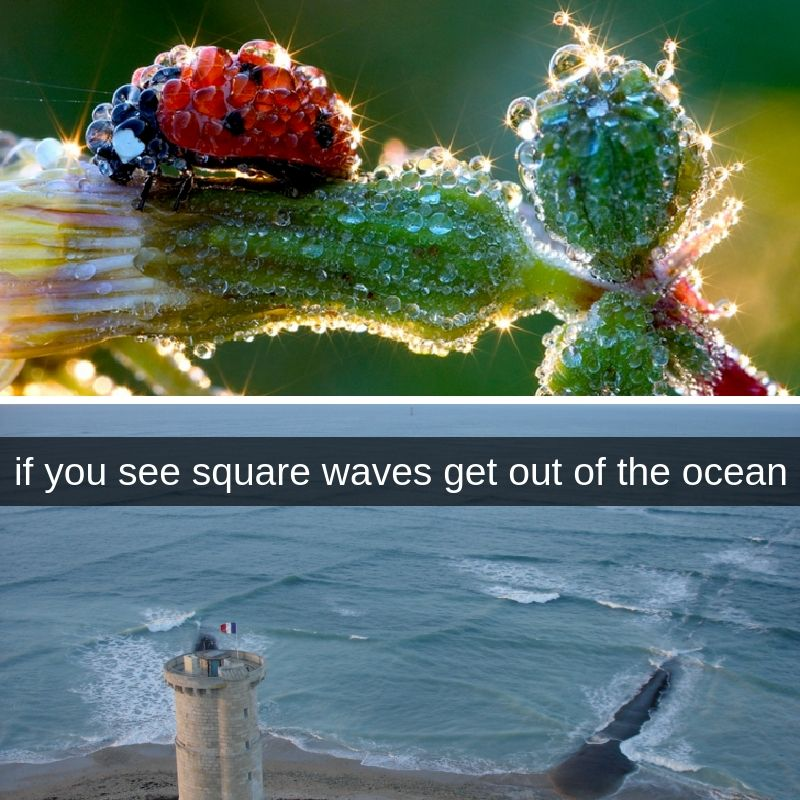 Surreal Natural Events That Sound Like The Plot Of A Disaster Movie