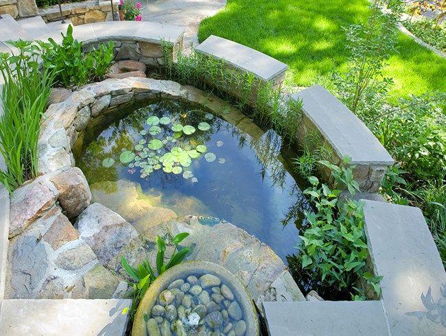 Rainwater Harvesting, Catchment Pond Tom Mannion Landscape Design Inc.  Arlington, VA