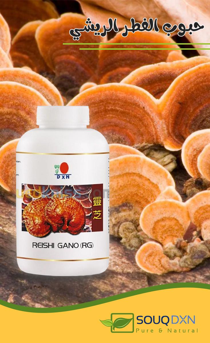 الفطر الريشي Reishi Food Pure Products