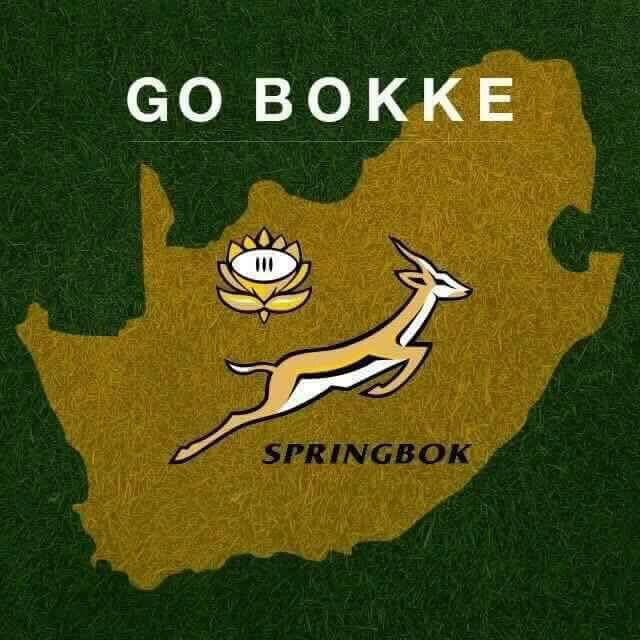 Go Bokke Go Bokke Springbok Rugby Springboks Rugby South Africa