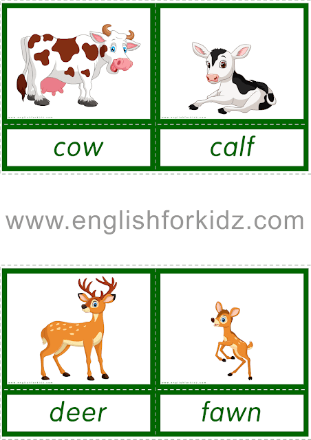 Animals And Their Babies Reading Comprehension Worksheets Reading Comprehension Animal Flashcards