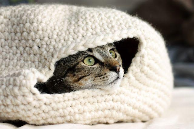 Eine Katzenhöhle – Für jeden Stubentiger ein Traum   @ http://www.dappertoad.com  Gefunden bei dappertoad (Originalanleitung bei eilentein). Für eine Gesamtgröße von 37cm x 37cm (breit) und 20 cm (hoc
