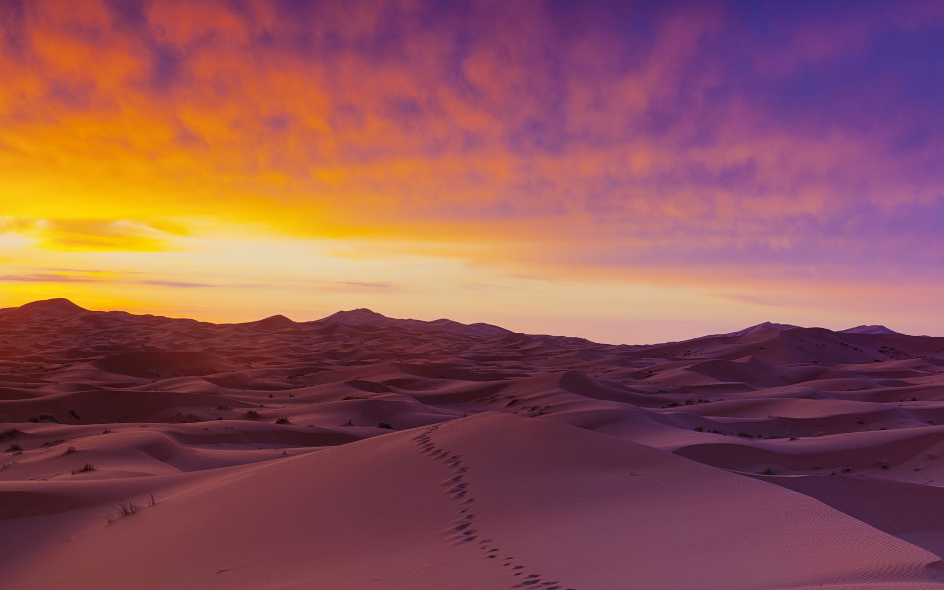 Download Sahara Desert Sand Wallpaper Free By udhao.net ...