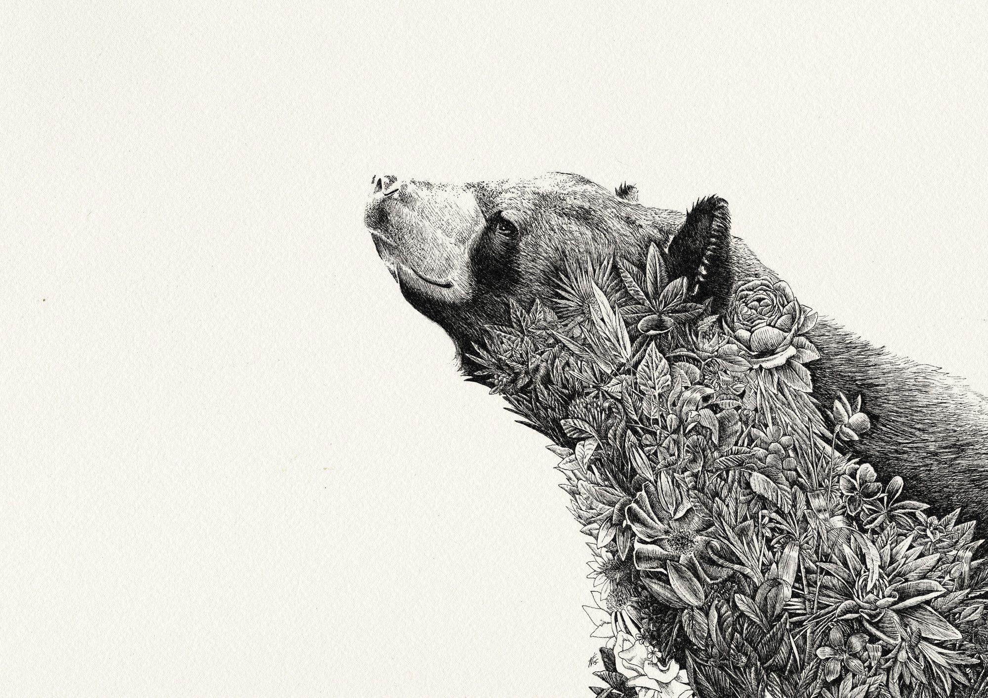Asiatic Black Bear- Giclée Print In 2019