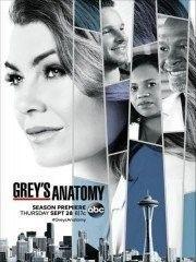 Grey's Anatomy Saison 15 Streaming Gratuit : grey's, anatomy, saison, streaming, gratuit, Grey's, Anatomy, Anatomy,, Meredith,, Meredith