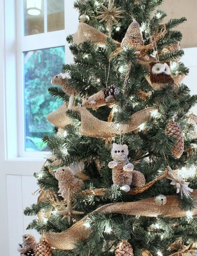 Christmas Tree Forest Inspiration Magical Christmas Pinterest