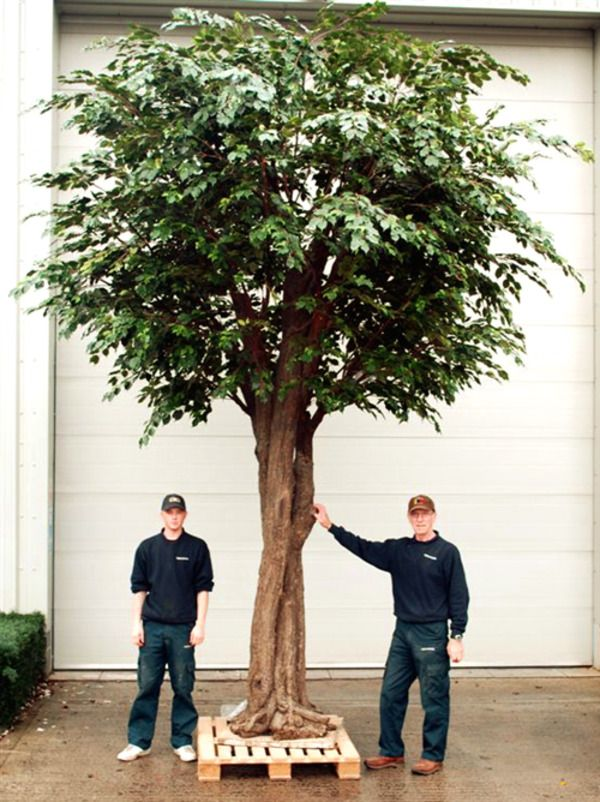 Large Artificial Trees Set Into Containers Need Additional Weight Thus The Complete Product Needs To Be Fake Indoor Trees Indoor Trees Artificial Indoor Trees