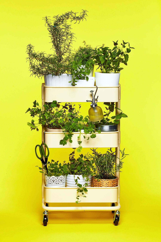 The IKEA RÅSKOG Cart as Herb Garden