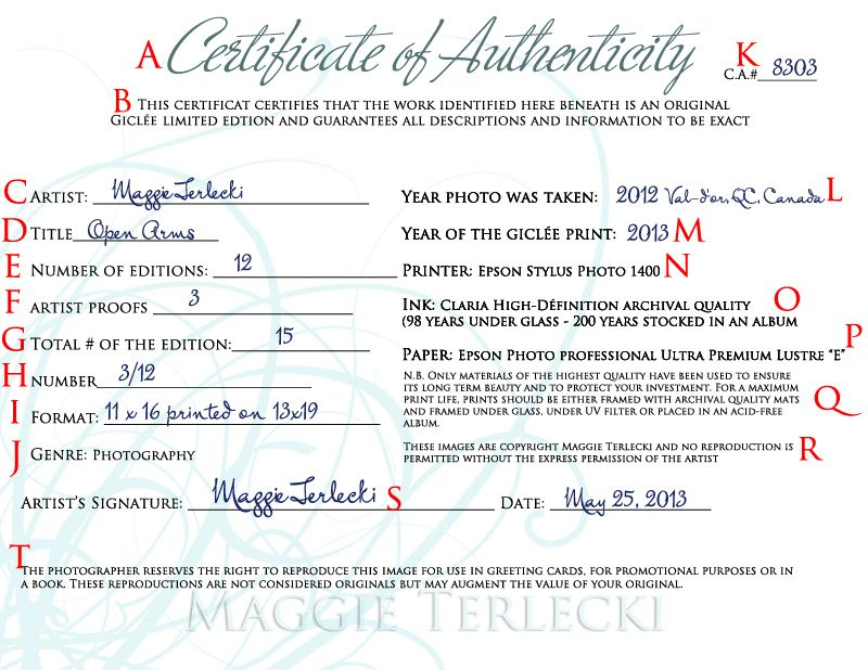 Certificate of Authenticity Sample Art Pinterest - certificate of origin template free