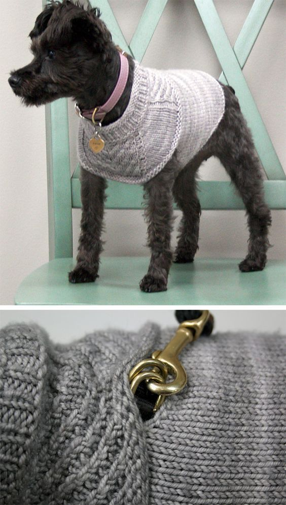 Knitting Pattern Dog Harness Wiring Diagram Services