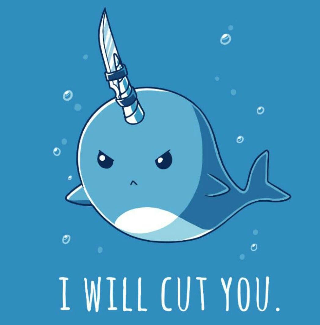 Narwhal and unicorn cartoon narwhal jokes funny pictures - Explore Turtle Shirts Narwhals And More