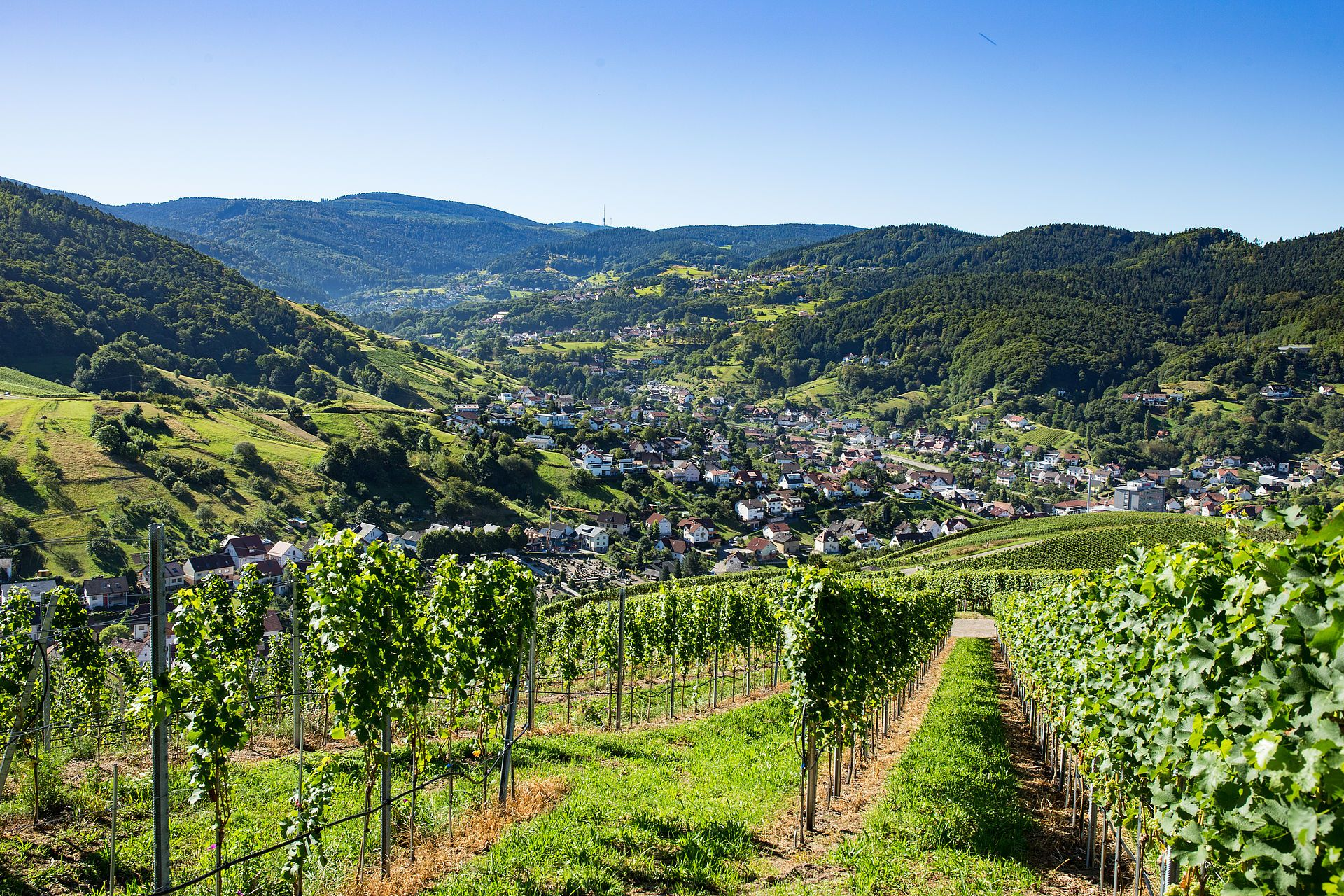 Bühlertal Schwarzwald