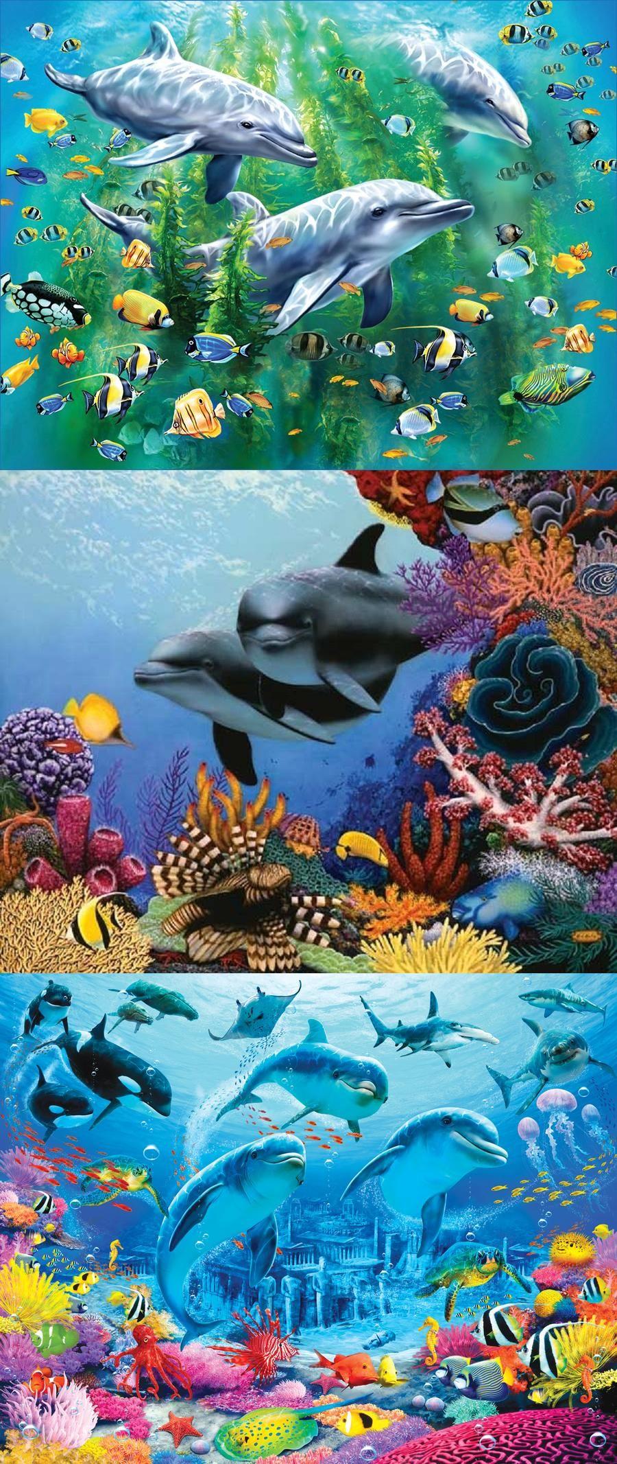 Under The Sea Adventures Fond Ecran Gratuit Paysage Paysage Dauphin