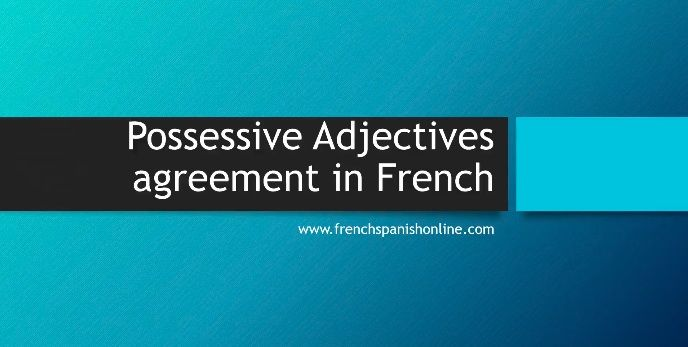 New Lesson Agreement Of The Possessive Adjectives In French For