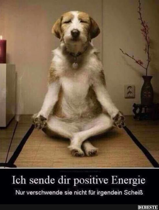 positive energie sprüche Ich sende dir positive Energie.. | Sprüche | Pinterest | Funny  positive energie sprüche