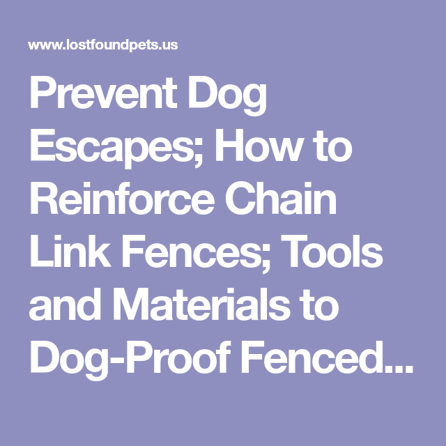 Prevent Dog Escapes; How To Reinforce Chain Link Fences