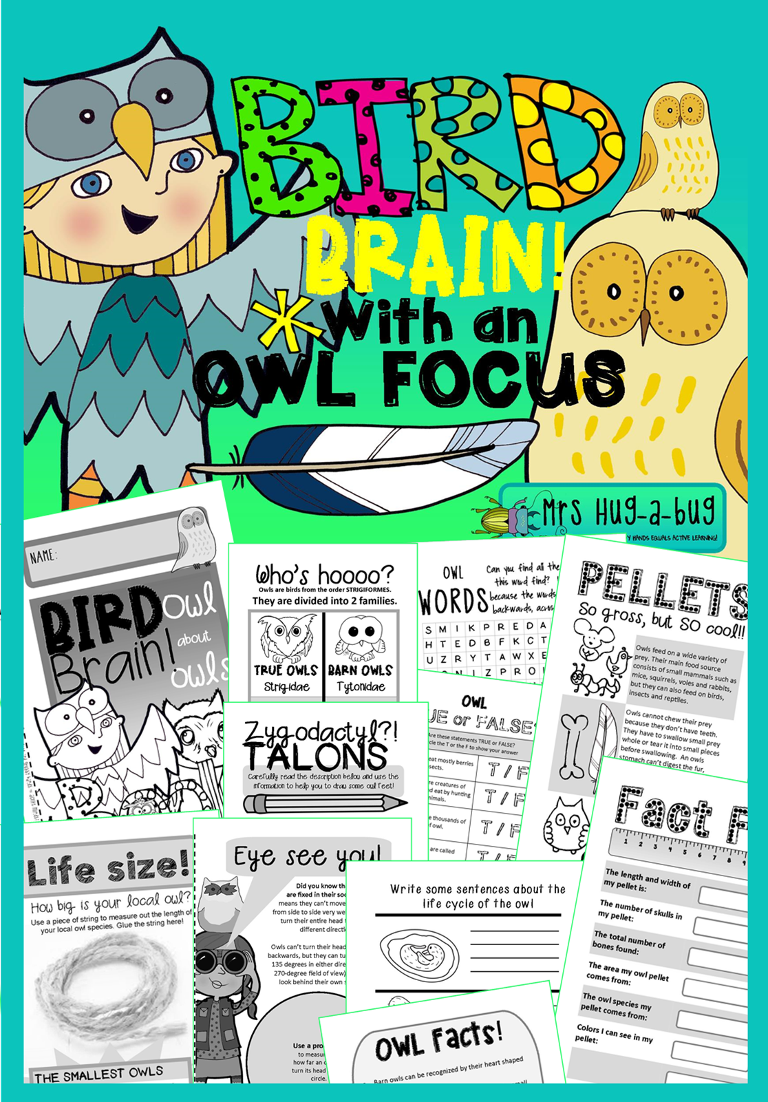 Owl About Owls Fun Amp Facts Bird Booklet With An Owl