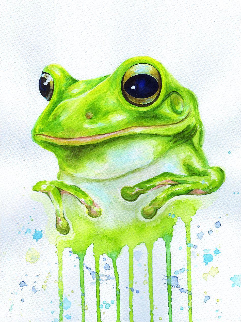 Красивые лягушки картинки нарисованные