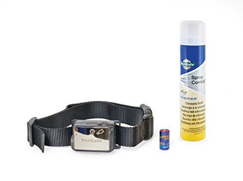 PetSafe Bark Avenue Quick Snap Dog Collar Large 1Inch Navy