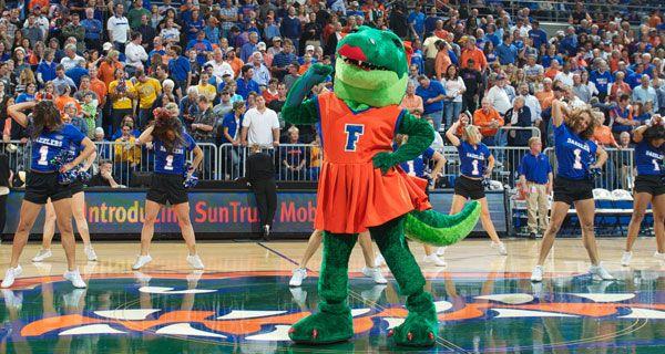 Spirit Teams Florida Gators Florida World Of Sports