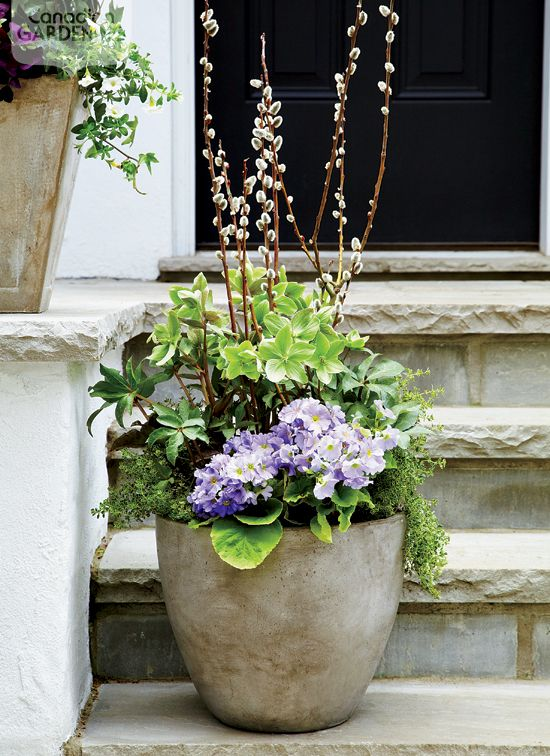 7 Beautiful Spring Containers Canadian Gardening With Images
