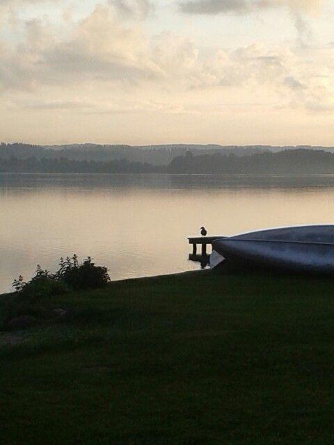 Aftenstemning Skanderborg sø