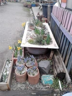 Container Gardening Ideas: An Old Bathtub Used As A Planter Image Used  Under A Creative Commons Licence With The Kind Permission Of London  Permaculture