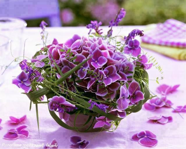 lavioleta enriquegil nuances de violet purple cie. Black Bedroom Furniture Sets. Home Design Ideas