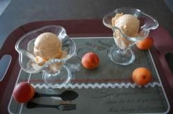 Sorbet abricot au thermomix de Vorwerk
