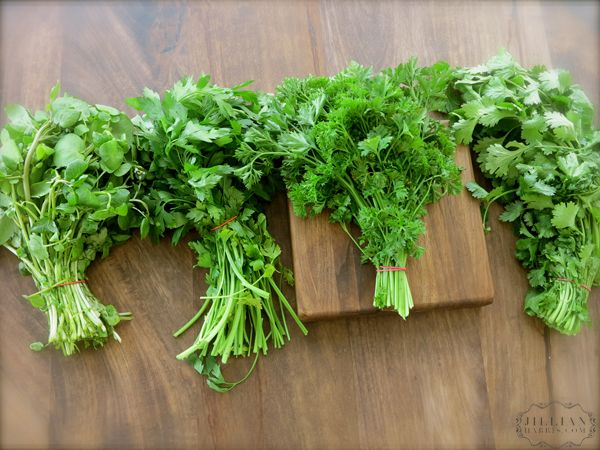 How To Keep Your #Herbs Fresh