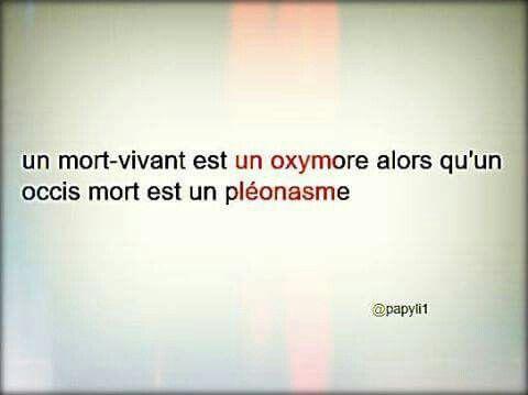 Oxymore et pléonasme   Humour, Jeux de mots, Clin d'oeil