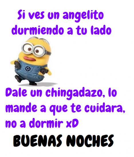 70522d45f60769e3c56480e137584a29 bad perra on memes, humor and spanish quotes